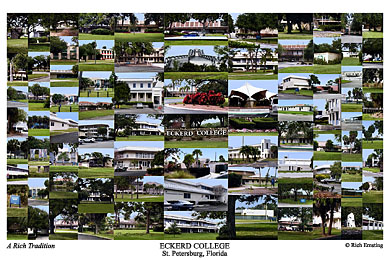 Eckerd College Campus Art Print