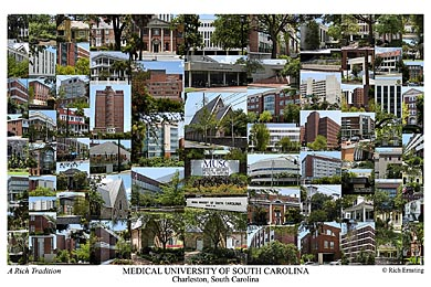 Medical University of South Carolina Campus Art Print