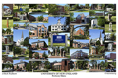 University of New England Portland Campus Art Print
