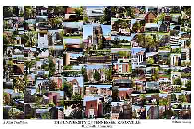 University of Tennessee Campus Art Print