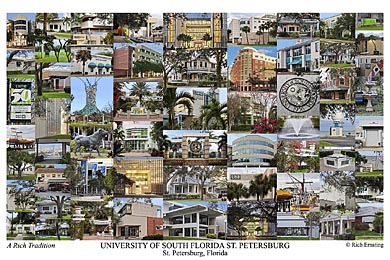 University of South Florida St. Petersburg Campus Art Print