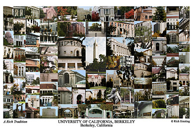 University of California, Berkeley Campus Art Print