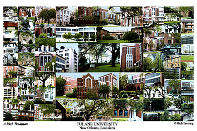 Tulane University Campus Art Print