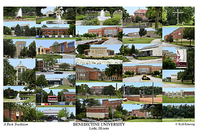 Benedictine University Campus Art Print