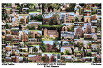 University of Saint Thomas Campus Art Print