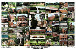Ohio  Dominican College Campus Art Print
