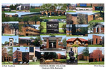 Thomas More College Campus Art Print