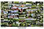 Adelphi University Campus Art Print