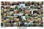 Providence College Campus Art Print