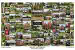 Pacific University Campus Art Print