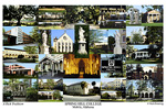 Spring Hill College Campus Art Print