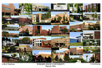 Wright State University Campus Art Print